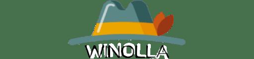 Bewertung Winolla Casino